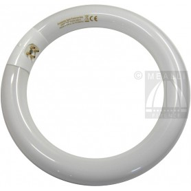 Circular Fluorescent T9 22W Cool light